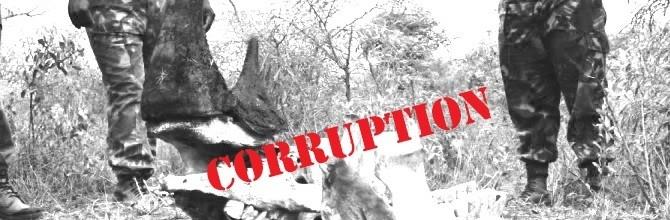 Thuli Madonsela opens a preliminary investigation into corruption enabling rhino poaching