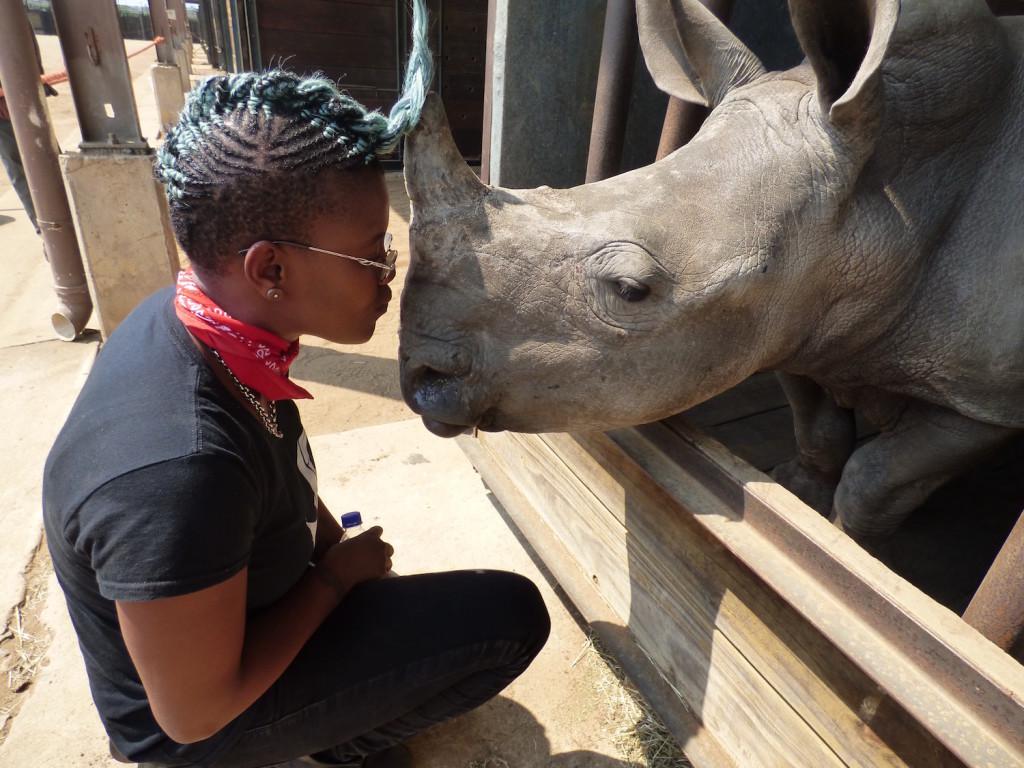 toya-rhino-web
