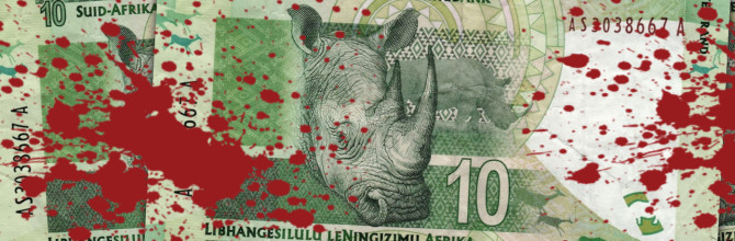 "Alleged rhino poaching kingpin ""Mr Big"" arrested in Hawks Police raid"