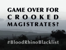 Blood Rhino Blacklist: R50 000 Reward